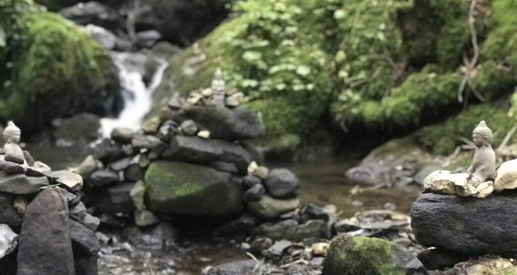 Thumbs & Needles, Shiatsu & Japanese acupuncture